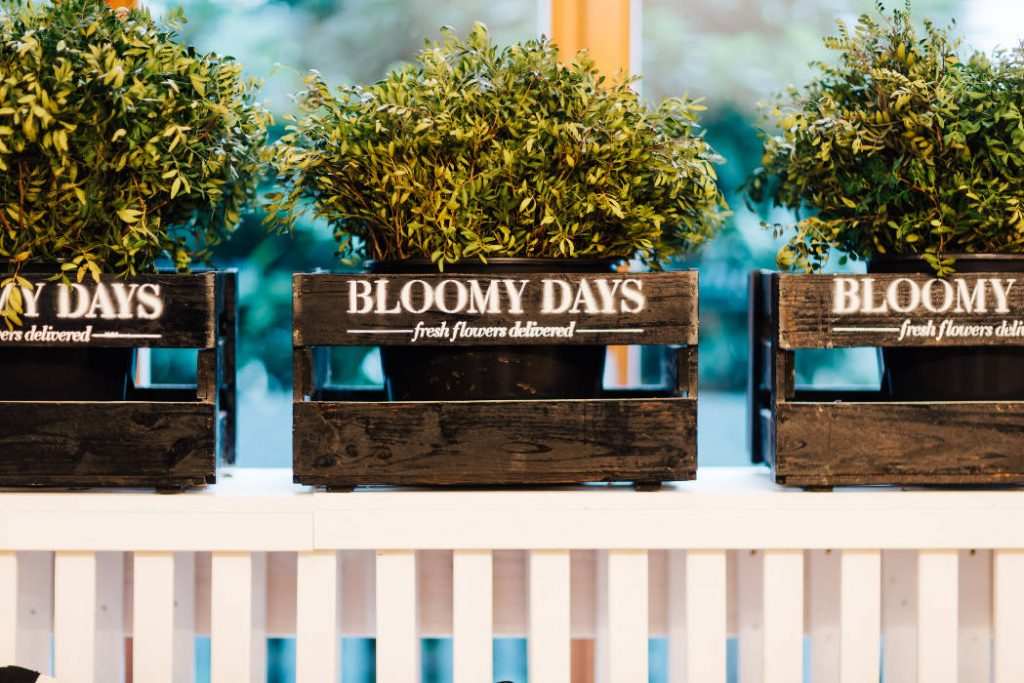 B robesuch bei bloomy days in berlin for Pflanzen laden berlin