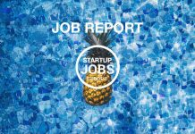 Startup Jobs Europe Bildquelle: pineapplesupply.co